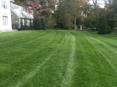 Pennsylvania_Turf_Rielly_After